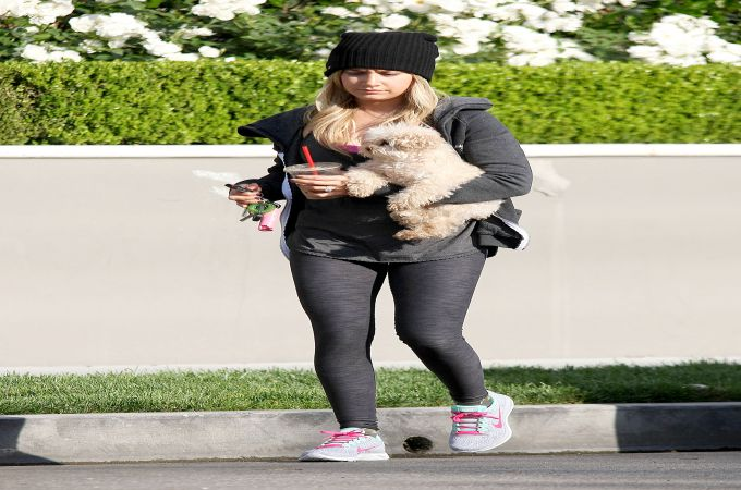 Ashley Tisdale and Maui Cute Maltipoo Dogs