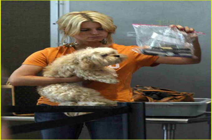 Jessica Simpson and Daisy Maltipoo Dog