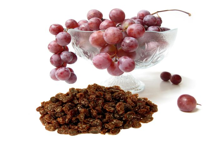 Grapes and Raisins are Toxic Food For Dogs