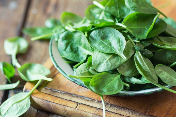 spinach good for dogs