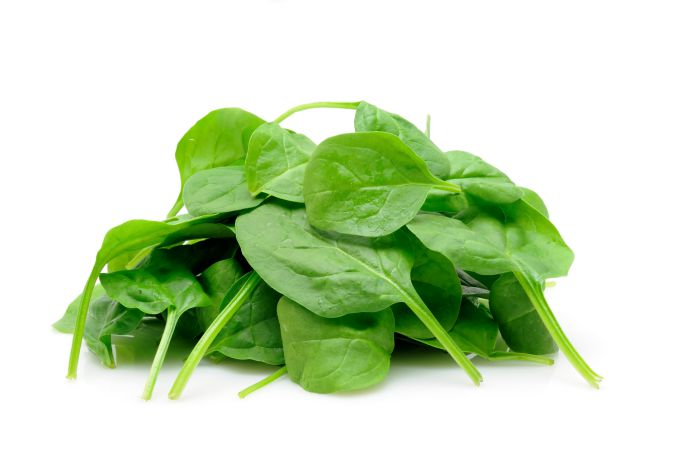 The Best Vegetables For Dogs [Spinach]