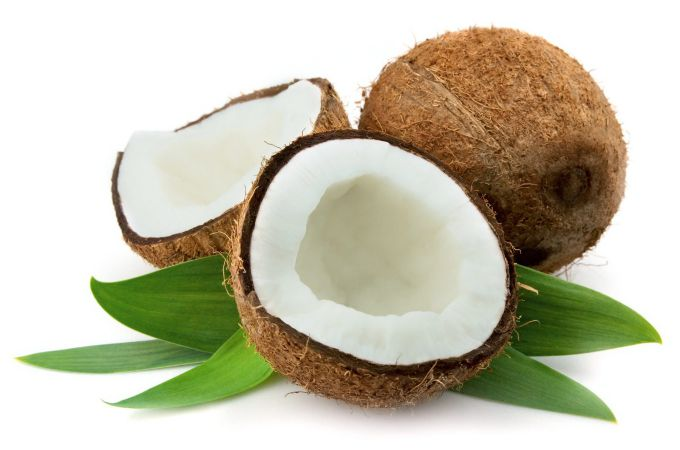 Delicious Coconuts for dog