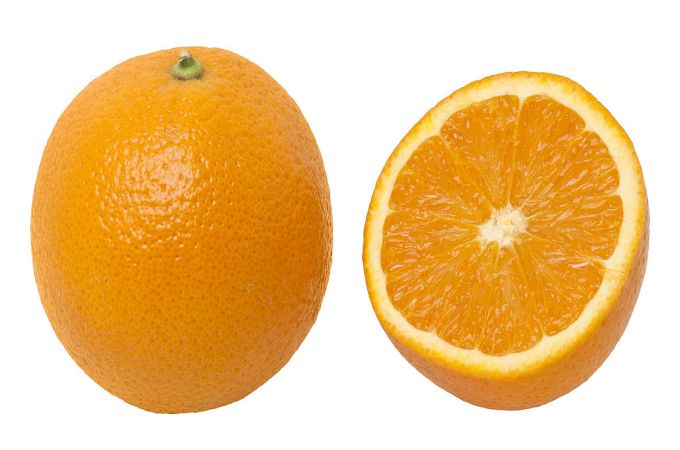 Oranges For Dogs Good Or Bad