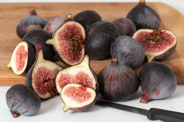 Figs is not good for your dogs