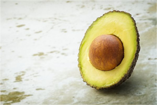 Why avocado is bad for dog?