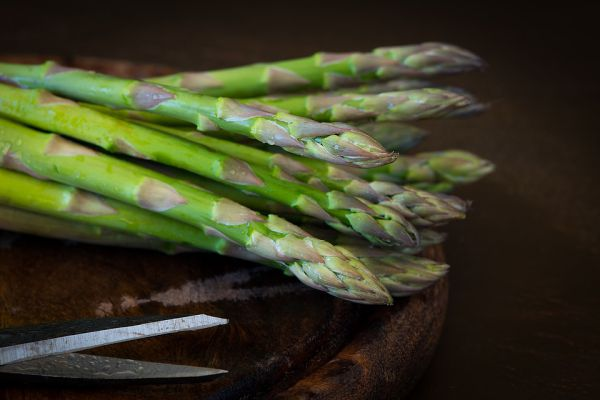 Asparagus For pets