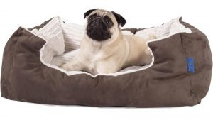 Top 10 Best Waterproof Dog Beds for Small Dogs