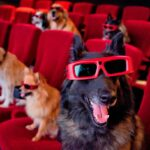 Amazing Dog Movies List for family