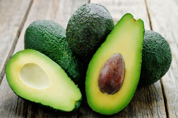 avocado for dogs