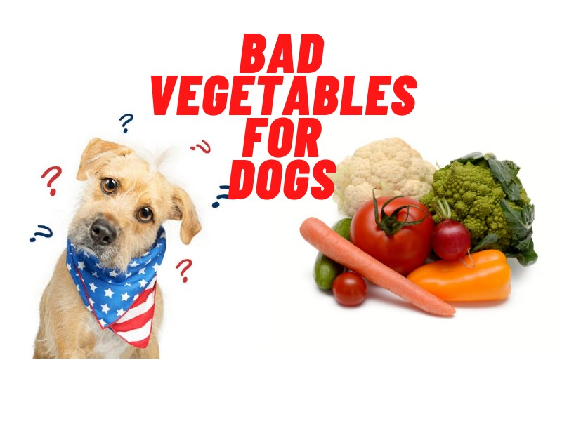 List of Bad vegetables for dogs